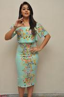 Nikki Galrani in Cute Dress Dress At Marakathamani Success Meet ~  Exclusive 019.JPG