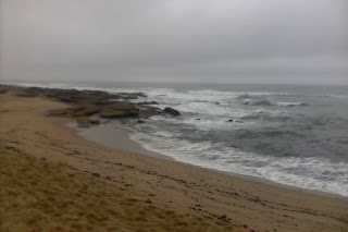 Elephant coast beachrs are brautiful, but inaccessable
