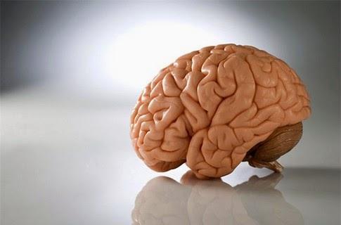Суть сознания человека: пассажир, а не машинист.
