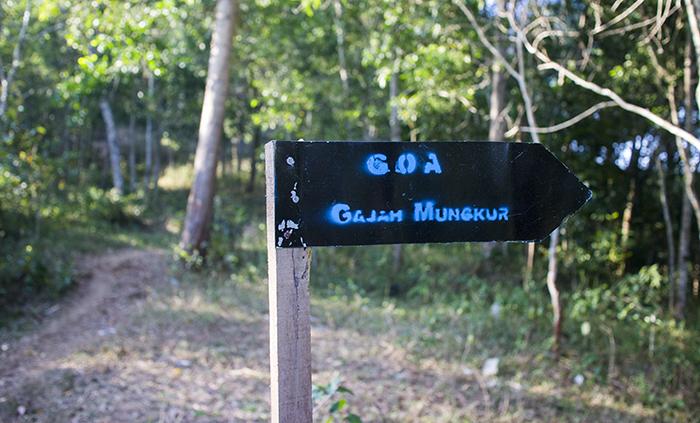 Plang Menuju Gua Gajah Mungkur