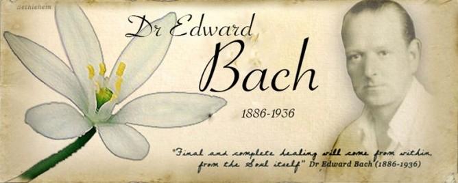 डा. एडवर्ड बेच अनुसार पुष्प चिकित्सा(Bach Flower Remedies)क्या है