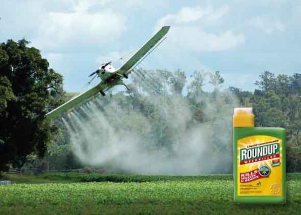 Μία ακόμη νίκη ενάντια στη Monsanto με τη δύναμη 2 εκατομμυρίων πολιτών