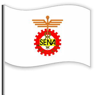 bandera del sena buena calidad