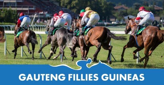 Gauteng Fillies Guineas - Hollywoodbets - Horse Racing