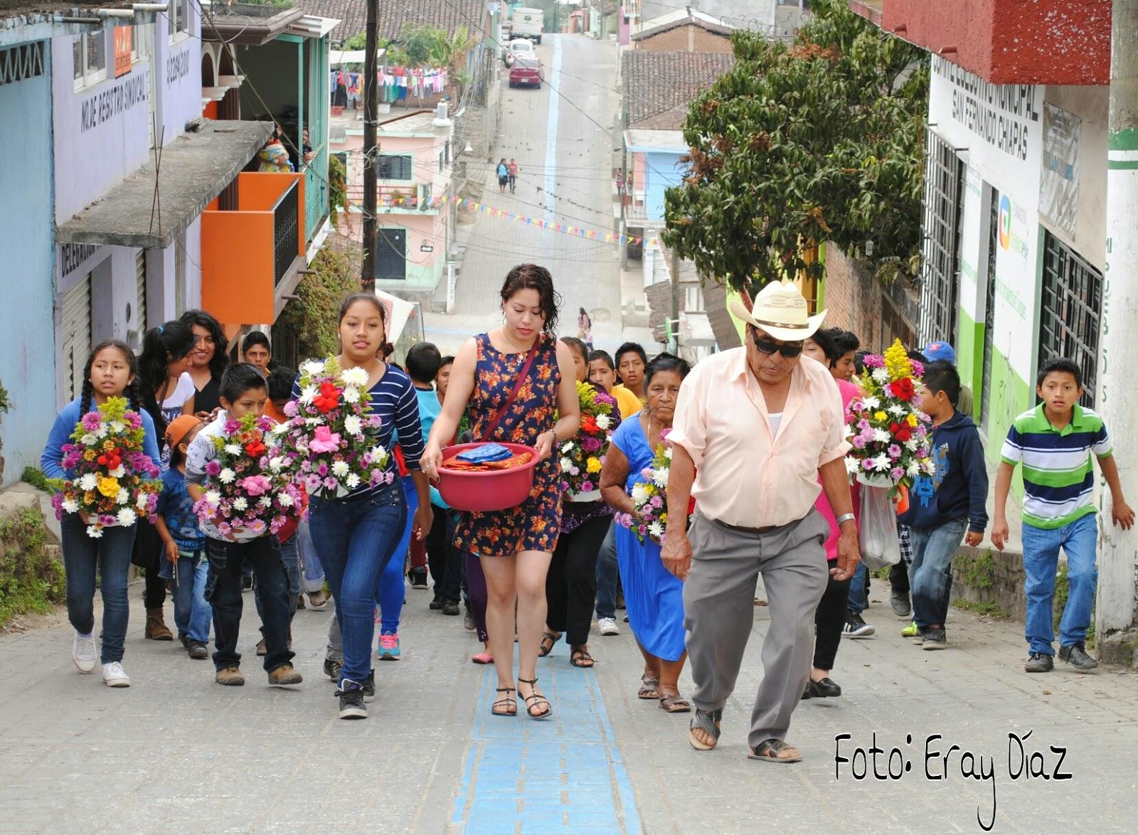 Informativo El Zoque San Fernando Se Tiñe De Colores Con La