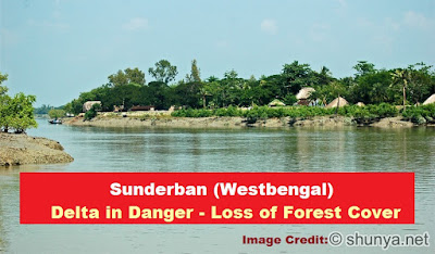 Delta in Danger - Loss of Forest Cover in Sunderban