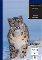 Fading Footprints: The Killing and Trade of Snow Leopards by Stephanie Theile