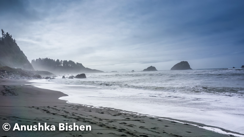The region's Pacific Ocean coast stretches from San Francisco Bay northwards to Humboldt Bay and on to the border of Oregon. The coastline is often inaccessible and includes rocky cliffs and hills, streams and tide pools.