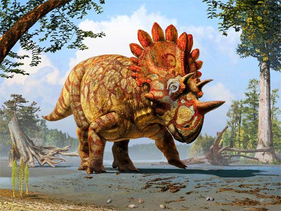 Nova espécie de dinossauro - Regaliceratops peterhewsi