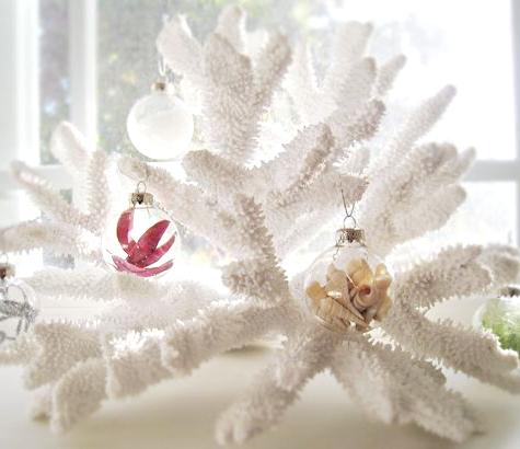 white coral for Christmas