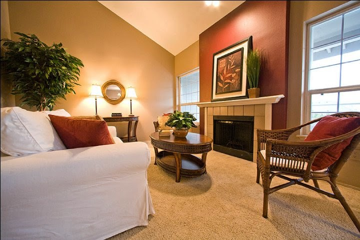 Paint color ideas for living room accent wall - Living room paint colour scheme ideas ...