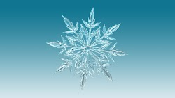 Snowflake Illustration