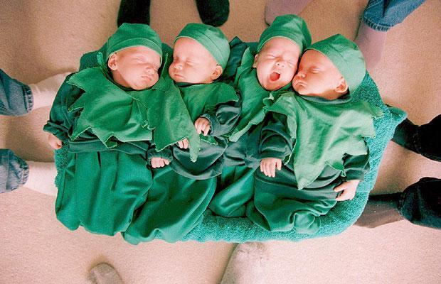 Multiple Babies Or Polyzygotic Siblings