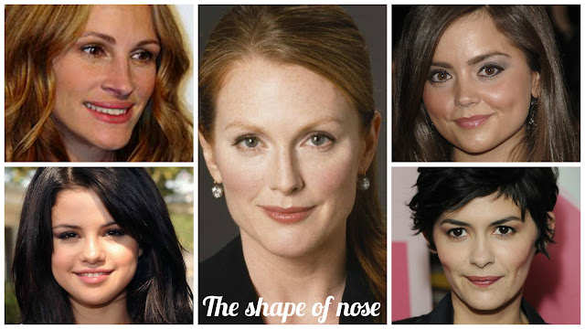The shape of nose kibbe