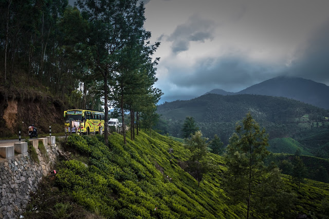 Tea plantations, serpentine roads and hills in Munnar, Kerala