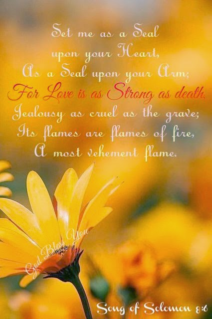 Set me as a seal upon your heart, as a seal upon your arm; for love is as strong as death, Jealousy as cruel as the frave; its flames are flames of fire, a most vehement flame. Song of Salomon 8:6