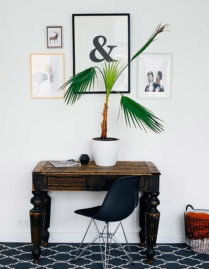 Inspiração de móveis para decoração minimalista