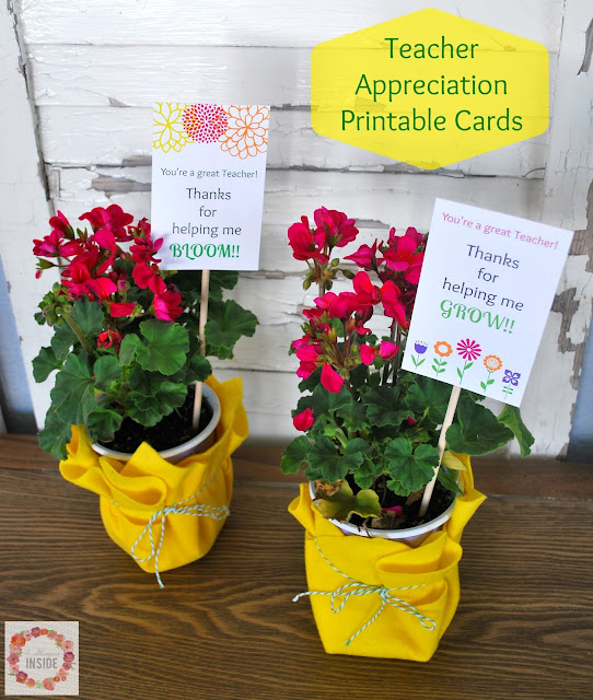 Teacher Appreciation Gift Idea and Printable Tag