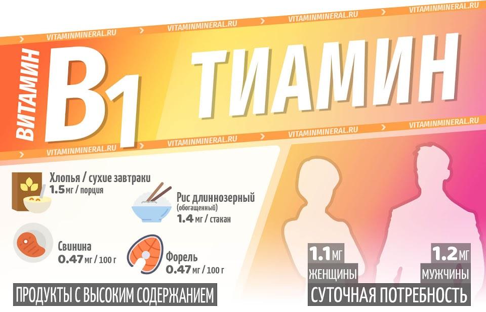 Витамин B1 для организма — инфографика