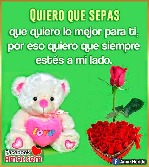 peluche de amor con flores