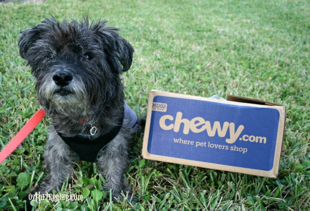 oz loves chewy.com tv commercial