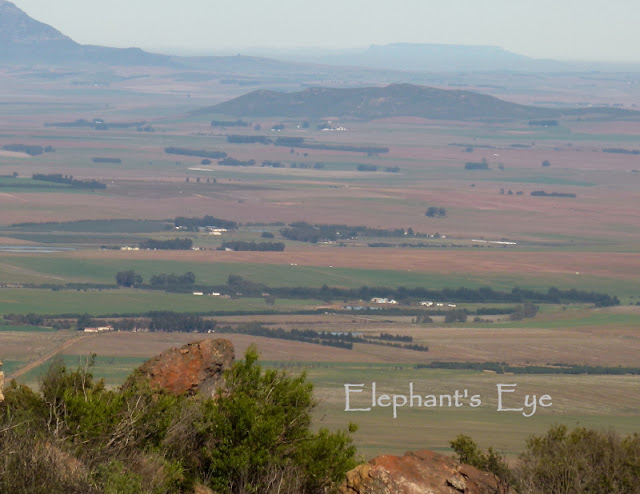 Looking from Groot Winterhoek back to Table Mountain 2 hours drive away by Jurg