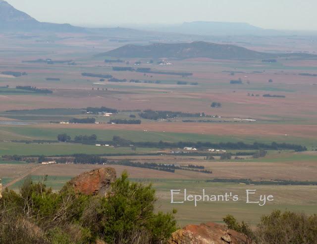 Looking from Groot Winterhoek back to Table Mountain 2 hours drive away by Jurg