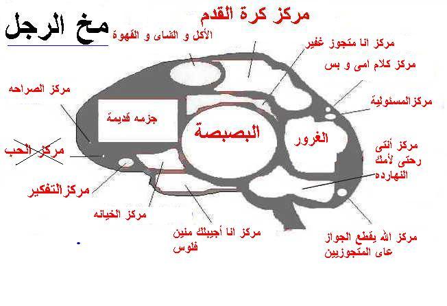 كافيه عين السيح أدم الشبكة الوطنية الكويتية