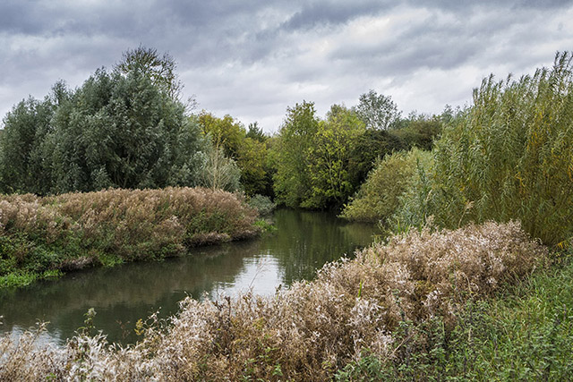 Stony Nature Reserve River Ouse
