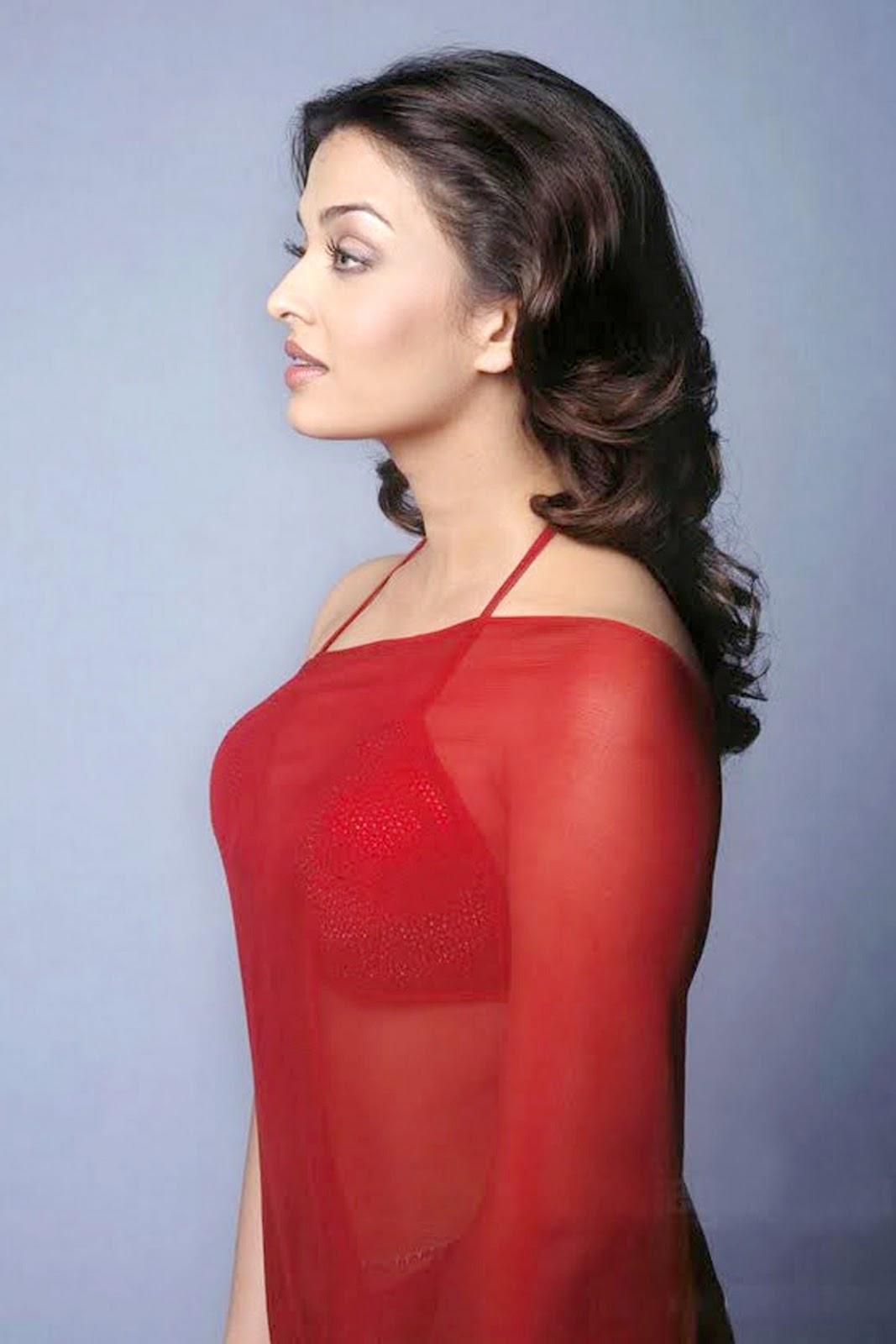 Indian Actresses Hub Aishwarya Rai Hot Pics Hub-3924