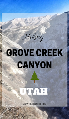 Hiking Grove Creek Canyon, Hiking in Utah with Dogs, Hiking in Utah