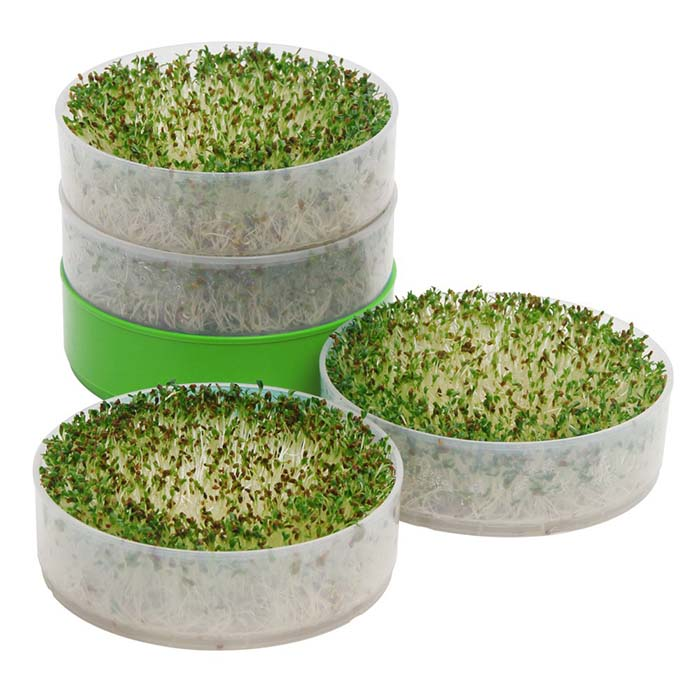 Deluxe Kitchen Crop Sprouter