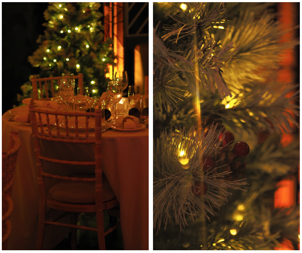 photography \ props \ christmas tree \ festive table