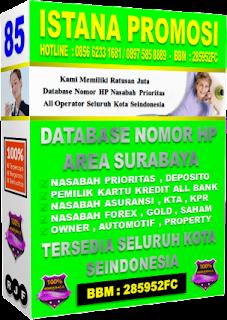 Download Database Nasabah Bank