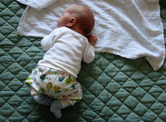 vauva, poikavauva, polarn o pyret, tilkkutäkki