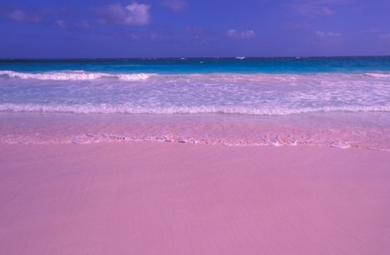 Be a secret pink sands beach for Pink sand beaches bahamas