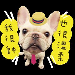 French Bulldog Mr Toasty