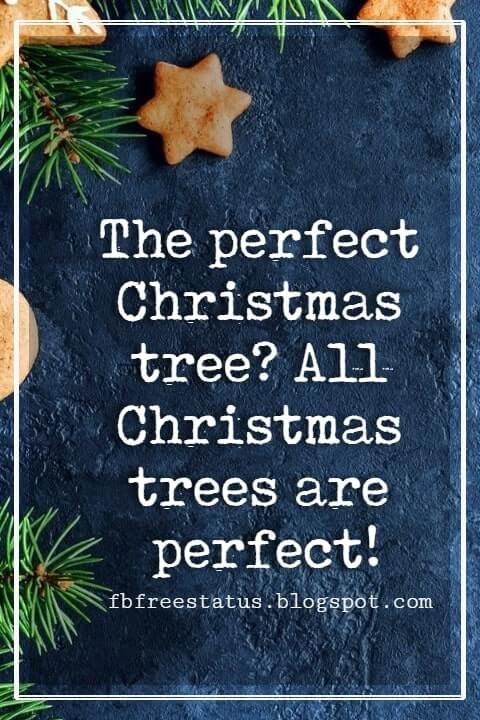 Merry Christmas Quotes, The perfect Christmas tree? All Christmas trees are perfect!- Charles N. Barnard