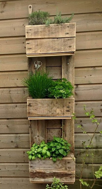 Vertical Gardens Made of Wooden Pallets 3