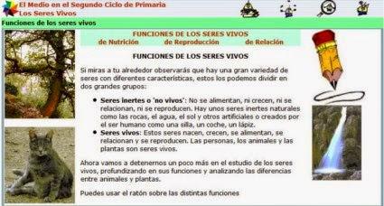 http://www.juntadeandalucia.es/averroes/recursos_informaticos/proyectos2003/apoyo_cm/seres/contenidos/funcio0.html