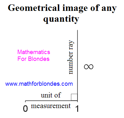 Geometrical image of any quantity. Co-operation of numbers and units of measurements. Geometrically unit of measurement is perpendicular to the numerical ray. Mathematics for blondes.
