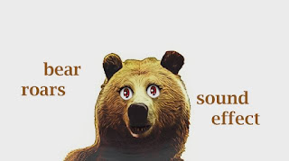 animal bear sounds