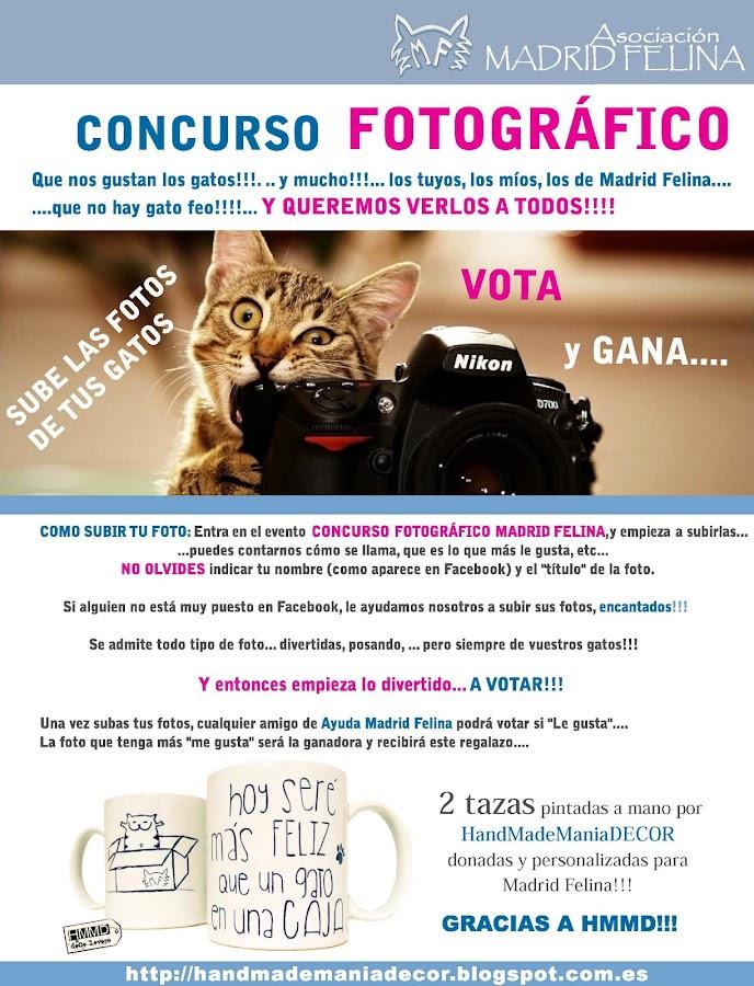 Colaboración HMMD - Madrid Felina. Concurso fotográfico. Concurso tazas con mensaje Hoy seré más feliz que un gato en una caja by HandMadeManiaDecor. Recaudación fondos asociación. Teaming 1?.