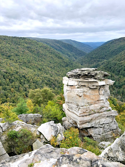 The Lindy Point Trail in Tucker County leads to some pretty big views of the Blackwater Canyon below.