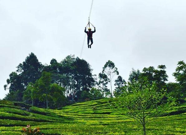 Wahana Flying Fox di Ciwalini Ciwidey Bandung