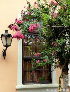Passeio em Morretes - janelas