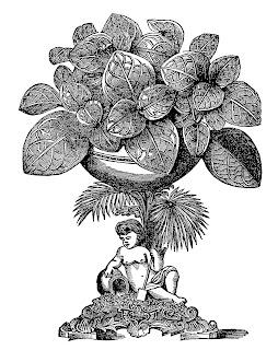 plant pot image printable clip art