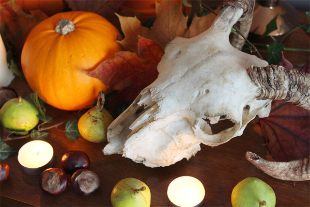 How to create a natural halloween display for B m halloween decorations