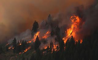 Trabaja Morelos con sector agrario para prevenir incendios