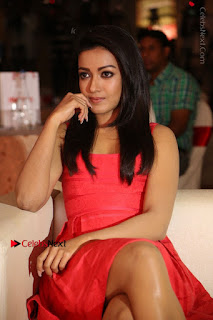 Actress Catherine Tresa Unveils Intex Air Conditioners  0128.jpg